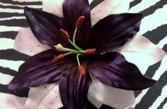 Lily purple flower whitewhite lily wedding lily by msformaldehyde, $9.00
