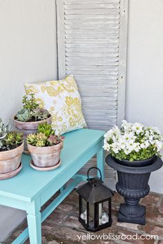 potted succlents & cute bench