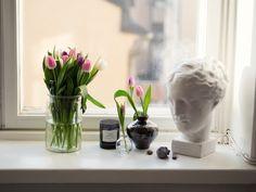 Pink tulips & Greek statue // pic eevakolu.fi