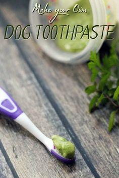 Minty Fresh Homemade Dog Toothpaste Recipe