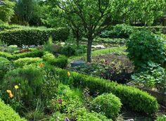 Le #potager de La Maison de L'Eclot - La Maison de L'Eclot #Garden - Dordogne, France