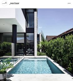 Images by Derek Swalwell. Masuto is a duplex project in the Melbourne, Australia. The elongated duplex residence is its own contemporary urban oasis; it enjoys an abundance. Indoor Swimming Pools, Swimming Pool Designs, Duplex Design, House Design, Plan Duplex, Moderne Pools, Pool Colors, Beautiful Pools, Beautiful Space