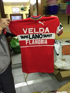 Flandria jersey