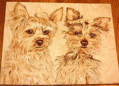 Yorkie Pair Pyrography by Angel Abbs-Portice