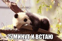 Доброе утро!)))