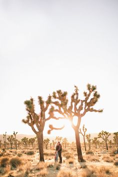 Joshua Tree engagement shoot   Photo by Laura Goldenberger Photography   Read more - http://www.100layercake.com/blog/?p=72038