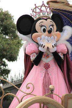 Princess Minnie!