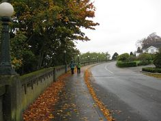 A Year of Seattle Parks: Queen Anne Boulevard