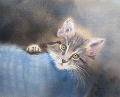 Click for next image Watercolor Cat, Watercolor Animals, Watercolor Ideas, Pet Portraits, Cat Art, Animal Kingdom, Cats And Kittens, Kitty, Fine Art