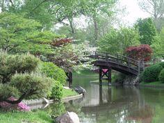 Japanese Garden, the Missouri Botanical Garden