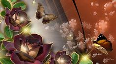 Fall Facebook Cover, Facebook Timeline Covers, Twitter Cover Photo, Fb Cover Photos, Vintage Flowers Wallpaper, Butterfly Wallpaper, Butterfly Flowers, Spring Flowers, Butterflies