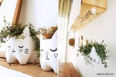 DIY : Kitty planters from plastic bottles | No instructions listed...just this cute pic!  You have been warned!