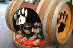 Wine Barrel Dog Bed by William Duff Architects Table Baril, Dog Habitat, Wine Barrel Dog Bed, Barrel Dog House, Barrel Sink, Barrel Bar, Barrel Table, Barris, Wine Barrel Furniture