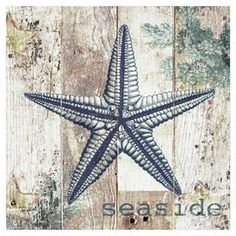 """Canvas print of a starfish on a weathered wood background.    Product: Wall artConstruction Material: CanvasDimensions: 16"""" H x 16"""" W"""