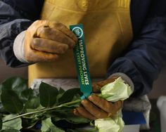 Tell mom they're #FairTrade!  Whole Trade® roses from @WholeFoods provide a 10% premium that goes directly into important community programs for the flower farmworkers. #FairMoms