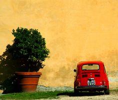 Italian culture (by RunMooseRun)