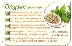 korenie oregano Raw Food Recipes, Healthy Recipes, Nordic Interior, Weight Loss Smoothies, Food Art, Natural Health, Aloe, Cooking Tips, Herbalism