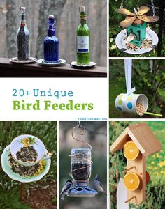 Become an avian fiend and lure in flocks of Northern Maine feathered friends!  We have tons of birds native to the area, and these bird feeders are a great way to encourage visits to your yard!  |  20+ Unique Bird Feeder Ideas:)