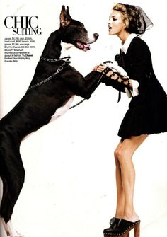 I think there should be more fashion shoots with great danes