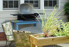 Grillin' place with lemon grass Lemon Grass, Yard, Canning, Patio, Courtyards, Home Canning, Lemon Balm, Garden, Conservation