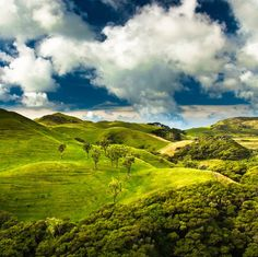 Green hills near Golden Bay, South Island