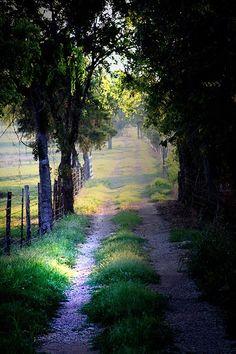 Como me gustan los caminos.. llenos de flores algunos  otros solo con tierra otros cubiertos de pastos y en fin una variedad de caminos que te llevan a hermosos lugares otras a tristes pero  igual bellos  caminos