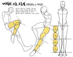 (19) 타코작가 (@taco1704) / Twitter Body Reference Drawing, Drawing Reference Poses, Anatomy Reference, Drawing Skills, Body Anatomy, Anatomy Art, Body Drawing Tutorial, Human Anatomy Drawing, Poses References