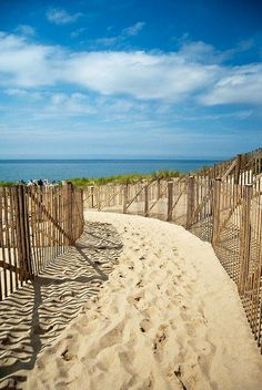 Jersey shore <3 #paths #nature