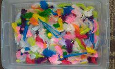 Lil' Scholars University's Blog Spot: Feather Fun Sensory Box