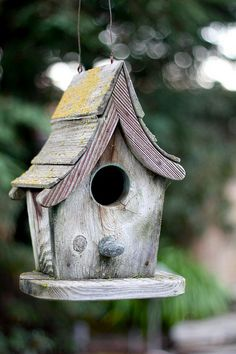 Birdhouse by foodjetaime: If I were a bird, I would like to live here. #Birdhouse #foodjetaime