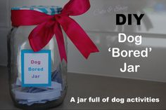 DIY Doggy Bored Jar! A jar full of activities to do with your dog. Paved by Paw Prints - Dog Blog