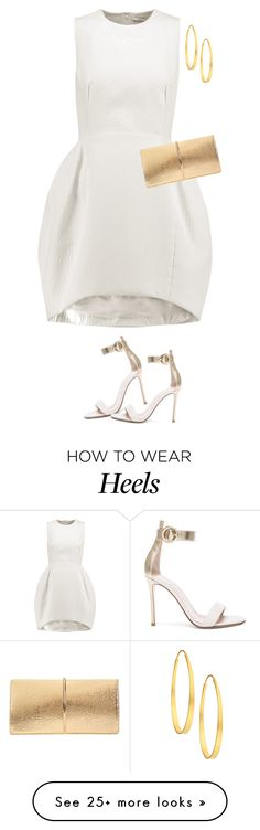 """""""Untitled #6678"""" by lisa-holt on Polyvore featuring Vionnet, Gianvito Rossi, Nina Ricci and Arena CPH"""