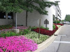 A commercial #flower #planting in #CentralOhio