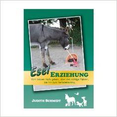 Esel Erziehung - Grundausbildung für tiergestützte Aktivitäten: Amazon.de: Judith Schmidt: Bücher