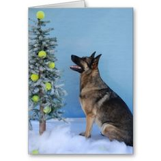 German Shepherd Christmas Tree Cards