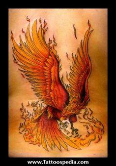 celtic phoenix tattoos - Google Search