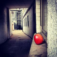 Forbidden Apple: A single bite taken, then discarded in a side street off Goswell Road EC1