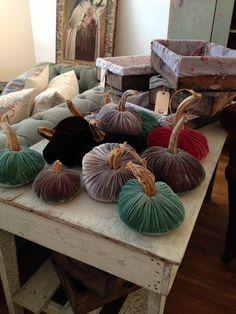 velvet pumpkins, rachel ashwell