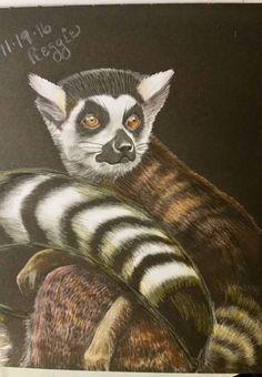 lemur by regina speekman rightnowar