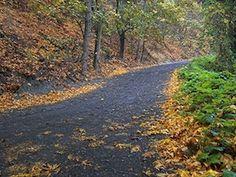 LA - Trabuco Oaks hiking -trabuco trail 300 Best Hiking Trails in Orange County
