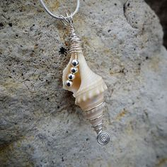 Seashell Silver Wire Wrapped and Beaded Pendant Necklace Seashell Silver Wire Wrapped and Beaded Pendant Necklace - Wire Jewelry Seashell Jewelry, Seashell Crafts, Sea Glass Jewelry, Beach Jewelry, Seashell Necklace, Wire Wrapped Jewelry, Wire Jewelry, Jewelry Crafts, Jewelry Art