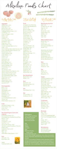 Alkaline Foods Chart - When you look at the American diet today, you will see full of high acid foods that lower body pH.  At lower pH levels opportunistic harmful bacteria, virus, fungal infections, and parasites are going to multiply like crazy. Interesting...