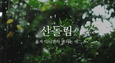 𝐚𝐩𝐩𝐫𝐞𝐜𝐢𝐚𝐭𝐞 𝐭𝐡𝐞 𝐞𝐚𝐫𝐭𝐡 ◍ green aesthetic Gifs, Legolas, Rain Gif, Smell Of Rain, Nature Gif, Nature Photos, Love Rain, Cinemagraph, Aesthetic Gif