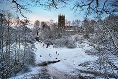 Chris Beesley - The Great British Winter, Lymm, Cheshire, England