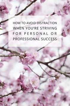 How to Avoid Distraction when you're Striving for Personal or Professional Success Personal And Professional Development, Personal Development, Creative Business, Business Tips, Find Your Calling, About Me Blog, Success, Blogging Ideas, Hacks