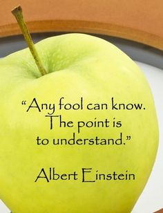 Any fool can know. The point is to understand.- Albert Einstein- Words of wisdom Words Quotes, Me Quotes, Motivational Quotes, Inspirational Quotes, Sayings, People Quotes, Lyric Quotes, Space Quotes, Famous Quotes