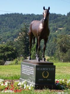 Seabiscuit: Willits, CA