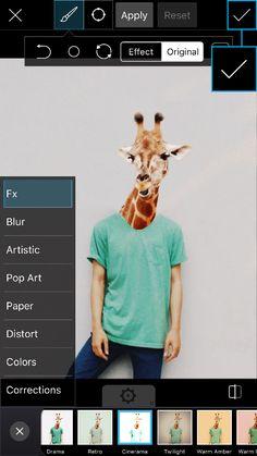 Trào lưu ghép hình ảnh đầu của bất kỳ loài động vật nào mà mình yêu thích lên thân hình người hiện đang cộng đồng những người dùng PicsArt trên toàn thế giới yêu thích, trong đó có cả giới trẻ Việt Nam.