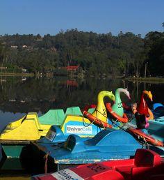 Kodaikanal Lake - Boats for hire