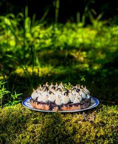 Mustikkakeikauskakkuun menee marjoja vain pari desiä. #blueberry #mustikka #resepti #recipe #blueberrycake
